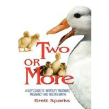 Two or More-A Guy's Guide Through Infertility Assistance, Pregnancy and Multiple Births